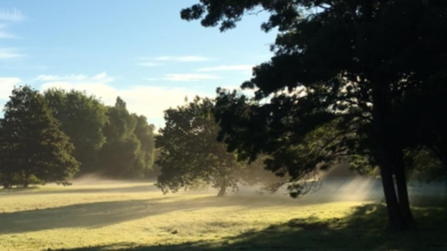 Swakeley's Park 18 July 2016 early morning - by Martyn Durrant